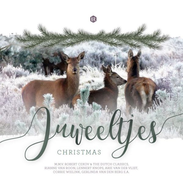 Juweeltjes | Christmas